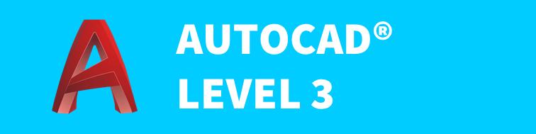 Autocad Level 3 button